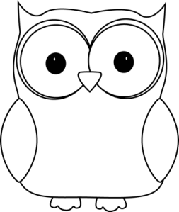 black-white-owl